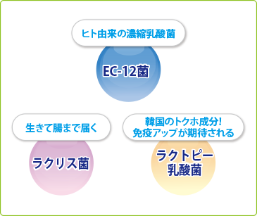 EC-12菌 ラクリス菌 ラクトピー乳酸菌